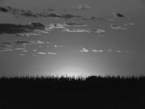 sunset-898392_960_720